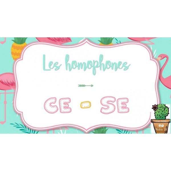 Les homophones CE - SE