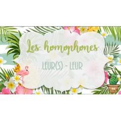 Les homophones LEUR(S)-LEUR