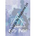 Journal de classe  (180pages)  HARRY POTTER