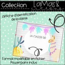 Lamas et citrons - Affiche de classe