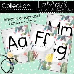 Lamas et citrons - Alphabet scripte