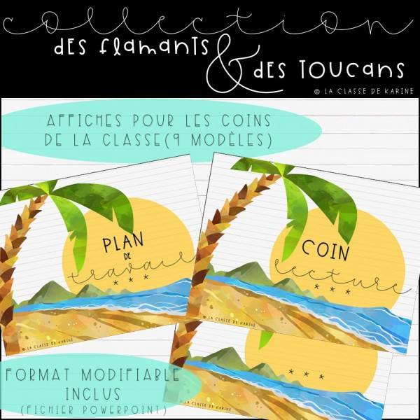 Collection Flamants et toucans - Coins