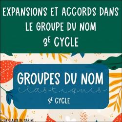 Groupes du nom élastiques - 3e cycle