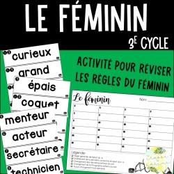 Le féminin - Activité - 3e cycle
