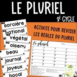 Le pluriel - Activité - 3e cycle