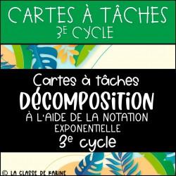 CàT- Décomposition et exposants - 3e cycle