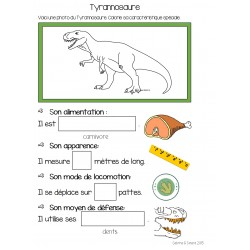 Cahier de dinosaures