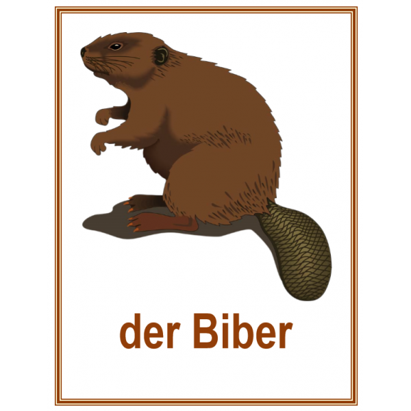 Tiere (Animaux en allemand) Affiches