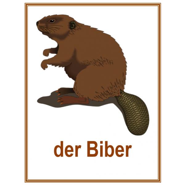 Tiere auf Deutsch Affiches