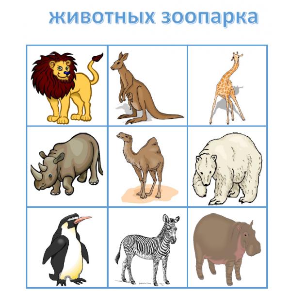 животных зоопарка en russe Bingo