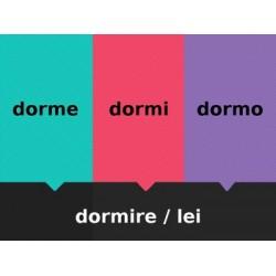 Verbi IRE in italiano Scacciamosche