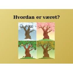 Vær en norvégien