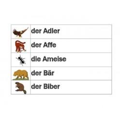 Tiere auf Deutsch Wörter Wand