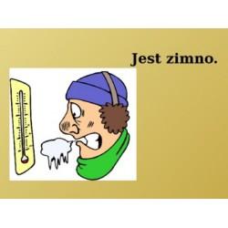 Pogoda po Polsku