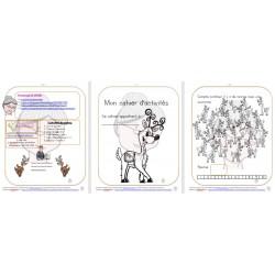 Cahier activités mathématique Thème Les rennes