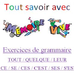 Homophones / Quelque / Tout / Ce / Ces / Leur
