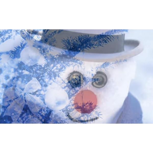 Au royaume du bonhomme hiver / questionnaire