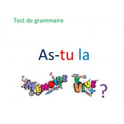 As-tu la Mémoire Vive ? / révision grammaire