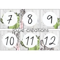 Nombres 1 à 36 cactus