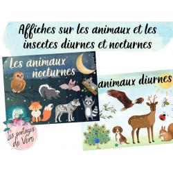 Affiches - Les animaux diurnes et nocturnes
