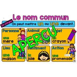 Affiche nom commun (Deuxième année)
