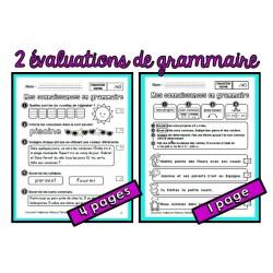 Deux évaluations de grammaire (fin d'année 1re)