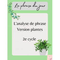 Analyse de phrase 2e cycle