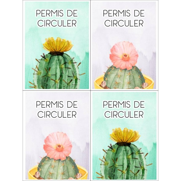 Permis de circuler thème cactus