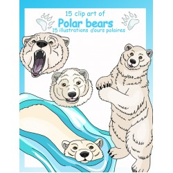 15 Clip art d'ours polaires