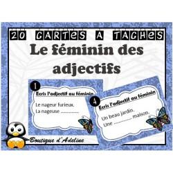 cartes à tâches: le féminin des adjectifs