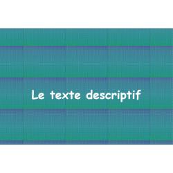Le texte descriptif