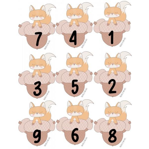 Combien de noisettes petit écureuil?