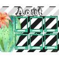 """Anniversaires """"Cactus"""""""