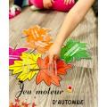 Jeu moteur de dé ~ les couleurs de l'automne