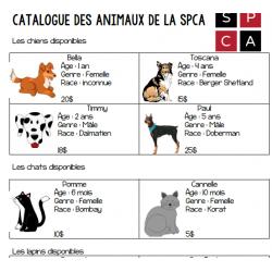 Adoption d'un animal à la SPCA (C1 + écriture)