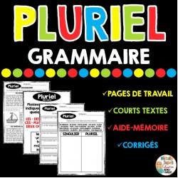 GRAMMAIRE - PLURIEL