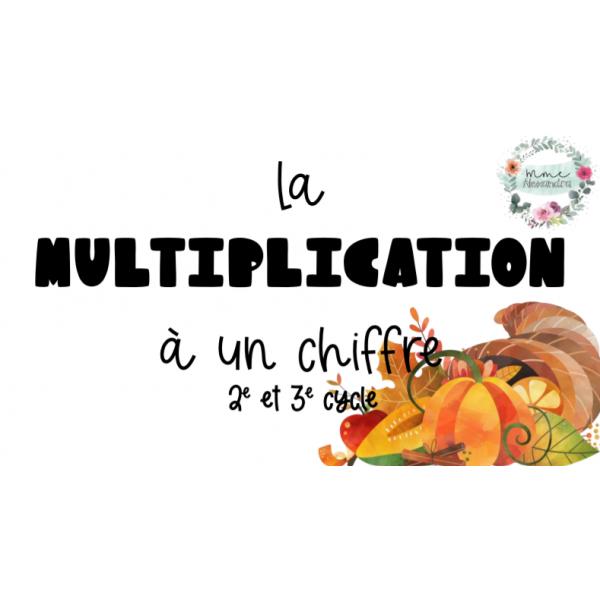 BUNDLE cartes à tâches multiplication