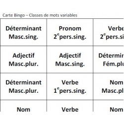 Bingo: classes de mots variables (prim.-sec.)