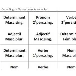 Bingo: classes de mots variables (prim.-sec.)