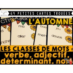 Cartes trouées/Classes de mots