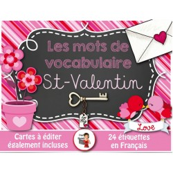 Saint-Valentin* 24 Mots de vocabulaire