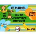 TNI - Jeu de grammaire/LE PLURIEL