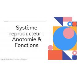 Cours sur les systèmes reproducteurs