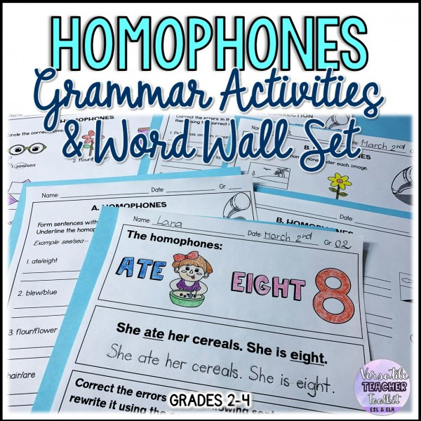 Homophones Grammar Activities and Word Wall Set