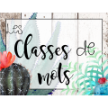 Affiches classes de mots - 2e cycle