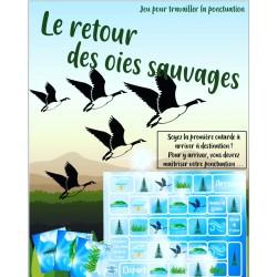Jeu de Ponctuation - Le retour des oies sauvages
