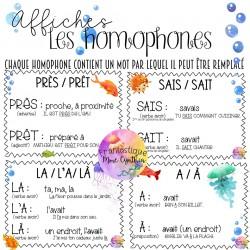 AFFICHES LES HOMOPHONES  (Avec exemples)