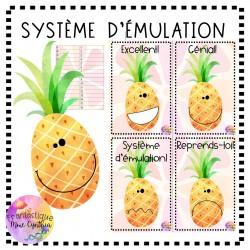 SYSTÈME D'ÉMULATION ANANAS