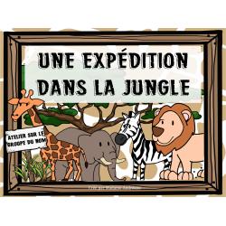 Une expédition dans la jungle (groupe du nom)