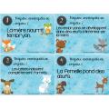 CAT classification des animaux
